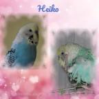 Heiko, mein kleiner Liebling!