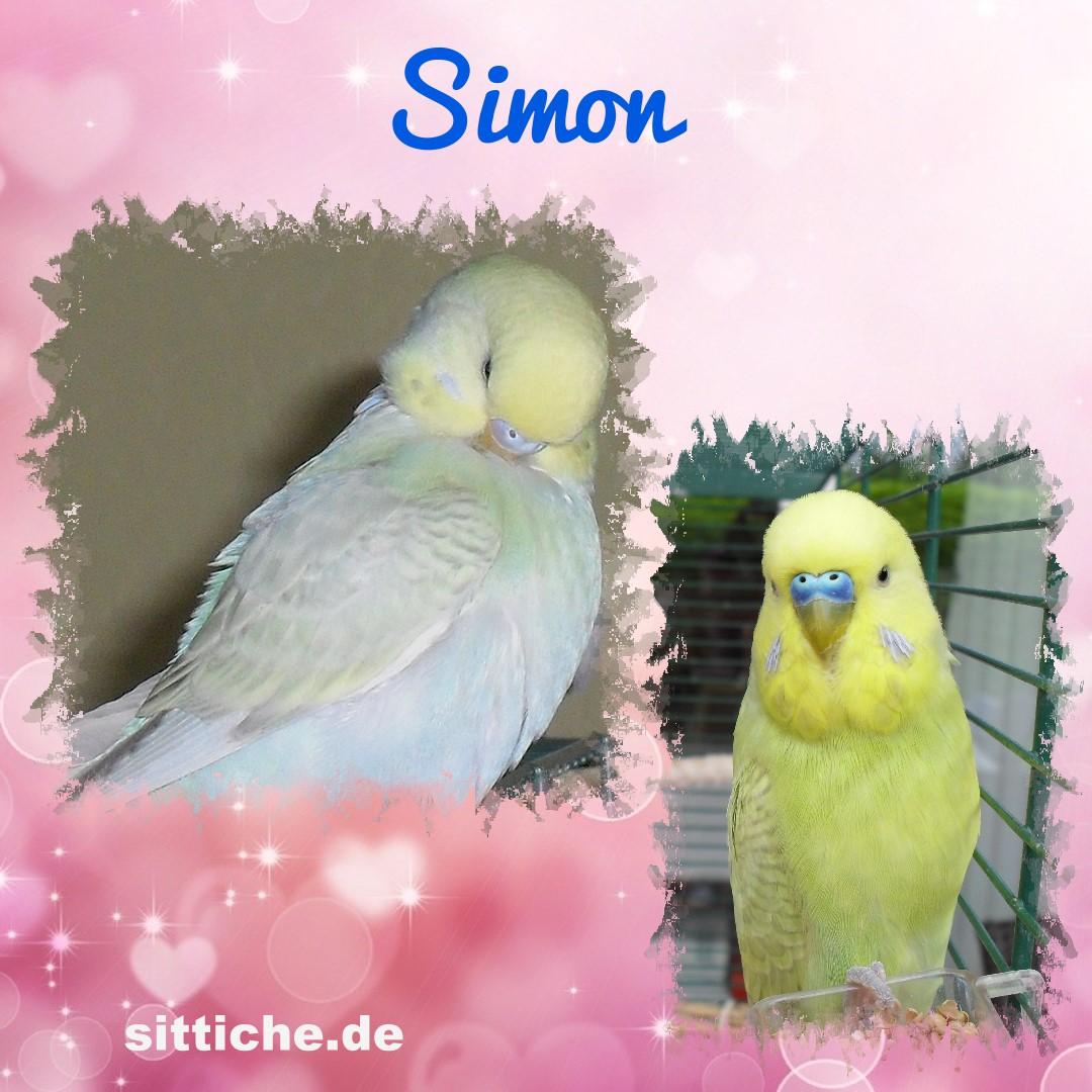 Simon, das kleine Fress-Säckchen